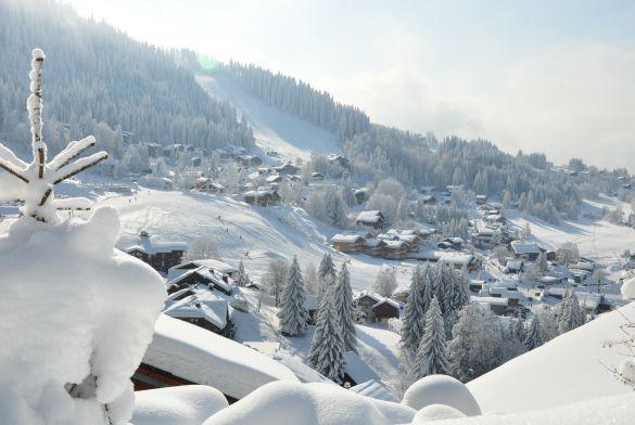 LES CARROZ D\'ARACHES - France Montagnes - Official Website of the ...